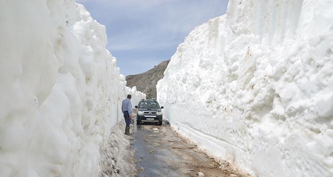 İş makineleri yaylalarda yüksekliği 10 metreyi bulan karla kaplı yolların açılması için çalışıyor