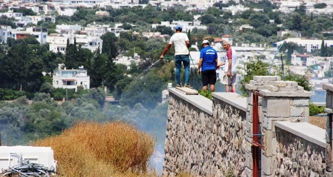 Bodrum'da lüks sitelerin bulunduğu arazide tüp patladı