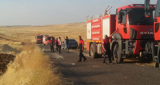 Mardin'de çıkan yangında 600 dönümlük alan kül oldu