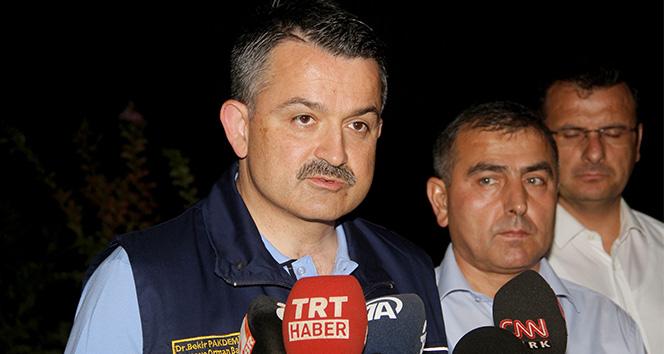 Bakan Pakdemirli: 'Yangında mahsur kalan 5 personelin sağlık durumu iyi'