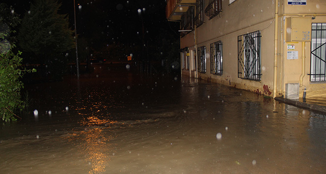 Beş saatlik yağmur sele neden oldu