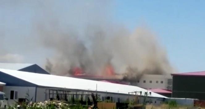 Isparta'daki Kara Havacılık Okulu'nda yangın