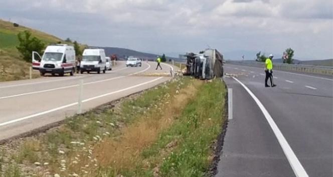 Limon yüklü kamyonet devrildi: 1 yaralı