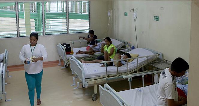 Filipinler'de dang humması salgını: 456 ölü