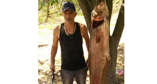 63 kiloluk dev yayın balığını olta ile yakaladılar