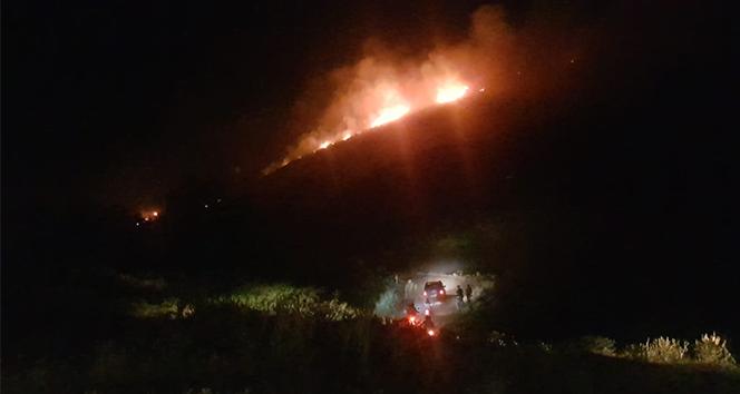 Aydın'da yangın; Makilik alanda başlayan yangın ormana doğru ilerliyor