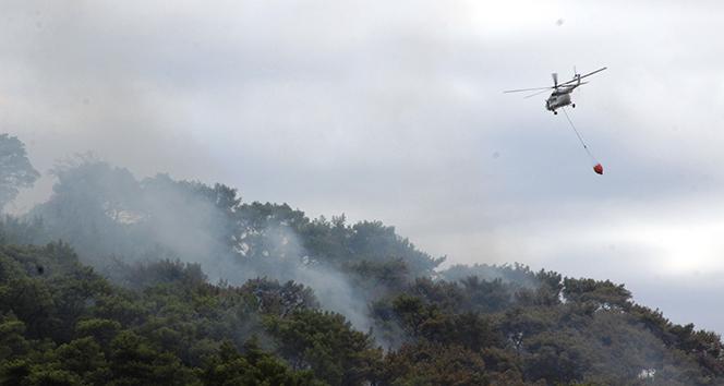 Aydın'daki korkutan yangın kontrol altına alındı