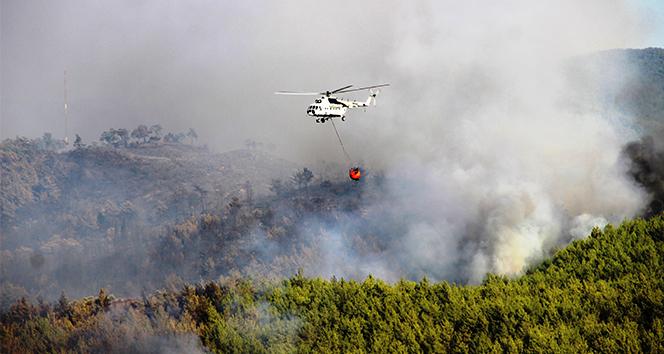 Bodrum'daki orman yangını tehlikeli boyuta ulaştı ile ilgili görsel sonucu