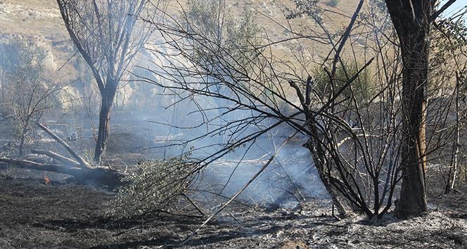 Sivas'ta 50 dönüm otluk alan yandı