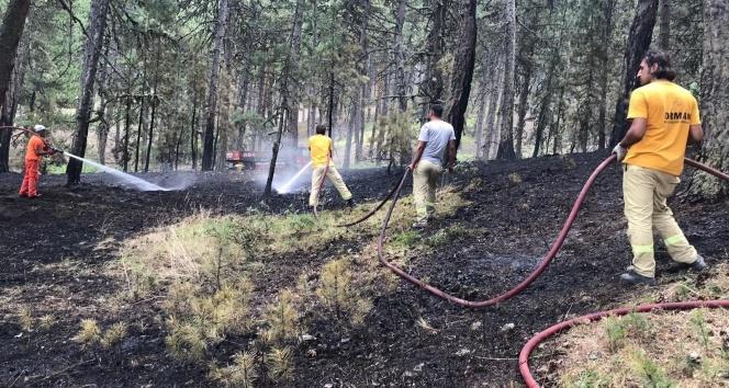 Orman yangını büyümeden söndürüldü!