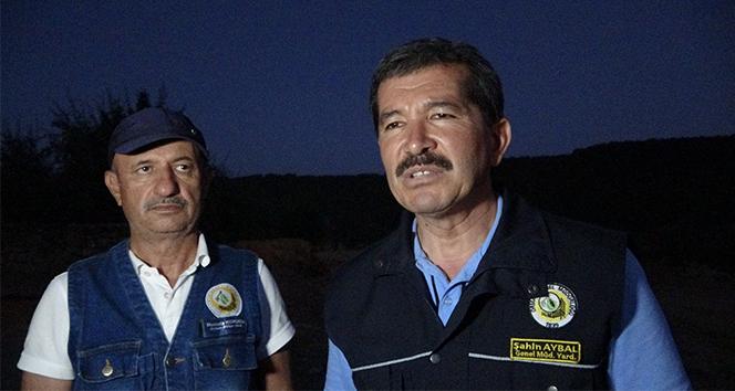 Uşak'taki orman yangından 3 hektarlık alan zarar gördü