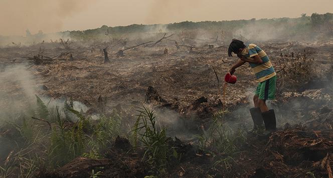 Malezya'da hava kirliliği nedeniyle 400'den fazla okul kapatıldı