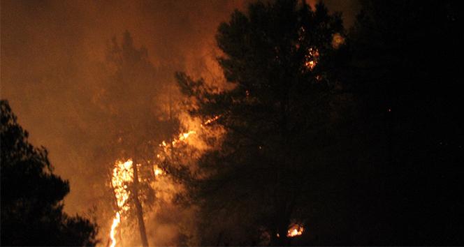 Hatay'da 25 farklı noktada orman yangını