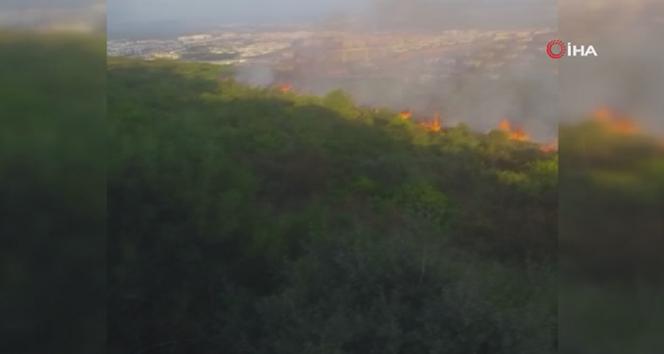Aydos ormanında korkutan yangın