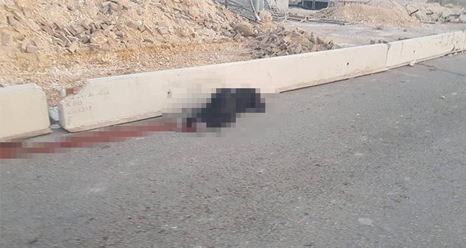 İsrail'in katlettiği Filistinli kadının kimliği ortaya çıktı
