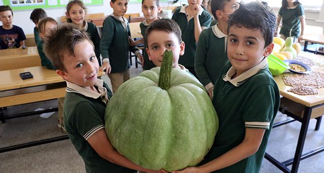Öğrencilerden 42 kiloluk bal kabağı