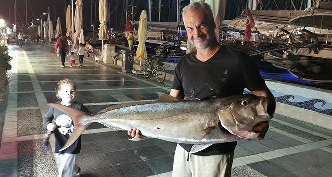 Marmaris'te 30 kiloluk Akya balığı görenleri şaşırttı