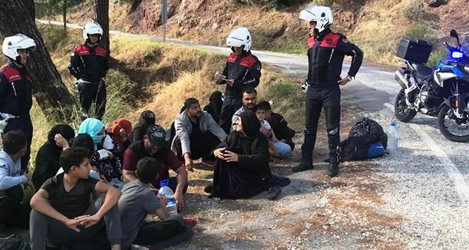 Marmaris'te düzensiz göçmen operasyonu
