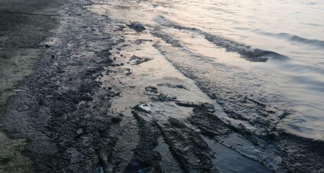 İzmir'de denizde korkutan manzara