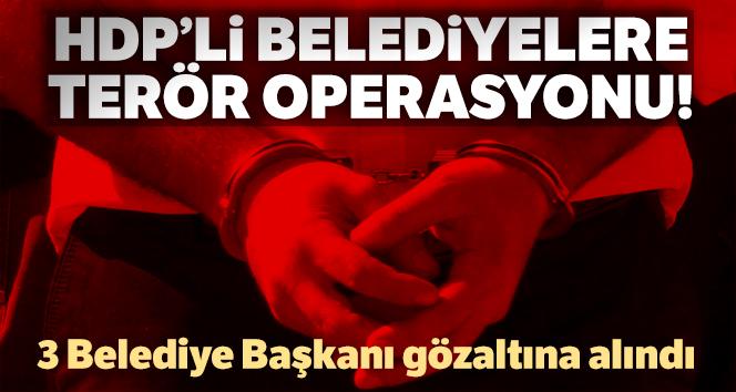 Diyarbakır'da HDP'li belediye başkanlarına terör operasyonu
