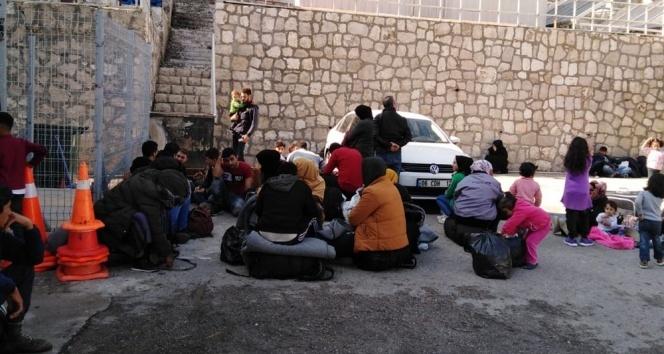 Bir operasyonda jandarmadan: 299 göçmen yakalandı