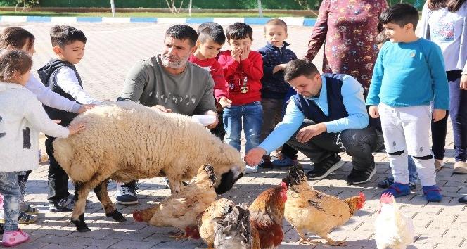 AP üyesi Zdechovsky'den HDP önünde evlat nöbeti tutan ailelere ziyaret