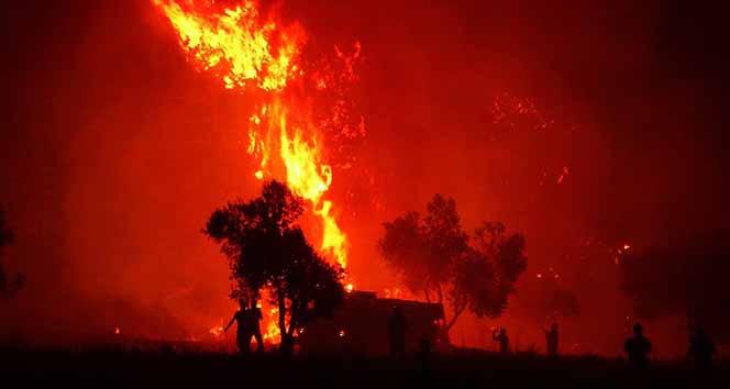 Çanakkale'de 2019 yılında 52 orman yangını çıktı