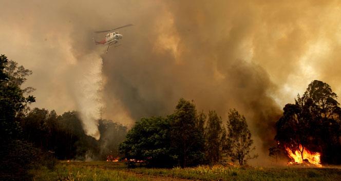 Avustralya'da orman yangını : 2 ölü, 100 ev yıkıldı