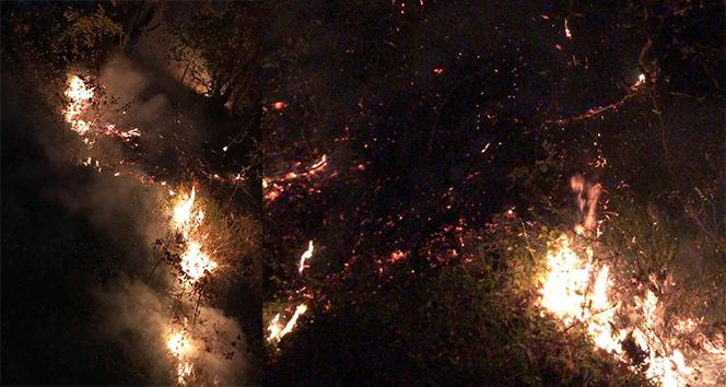 Kocaeli'de ormanlık alanda yangın