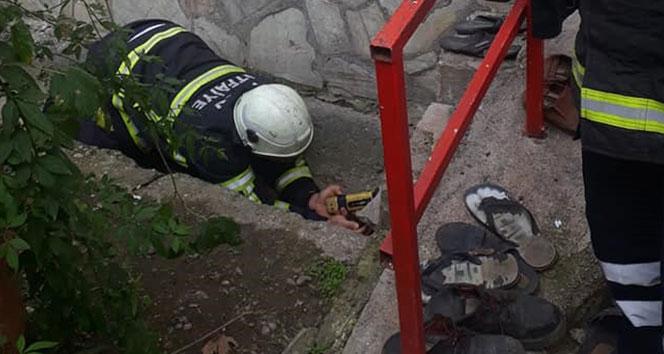 Beton boruya sıkışan yavru köpekleri itfaiye kurtardı