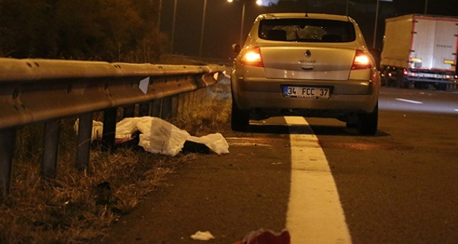 TEM'de otomobilin çarptığı kadın hayatını kaybetti