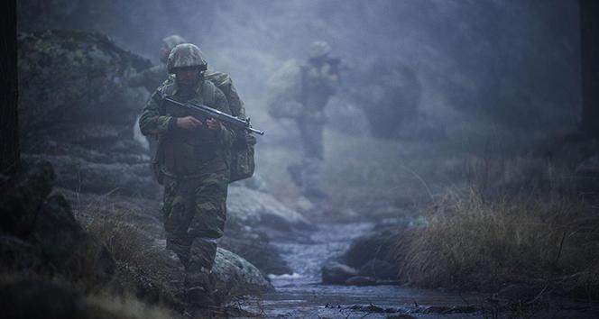 Biri 'Gri' kategoride olmak üzere 4 PKK'lı terörist teslim oldu