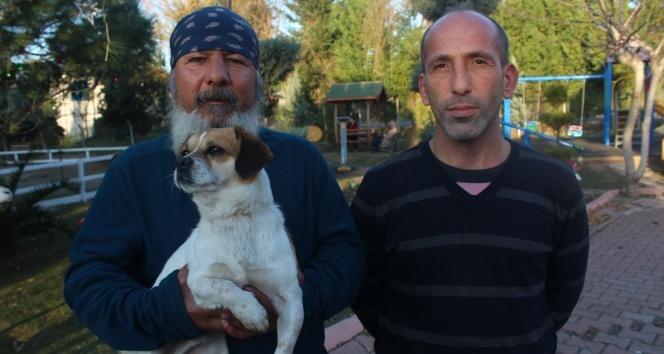Tasmasının sıkışmasıyla boğulan köpeği dakikalarca kalp masajı yaparak kurtardılar
