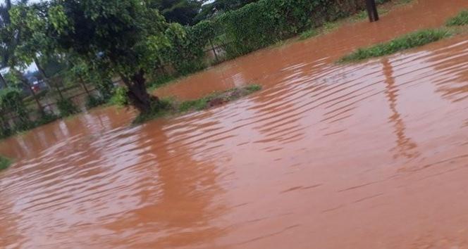 Uganda'da sel ve heyelanda 2 haftada 30 kişi öldü