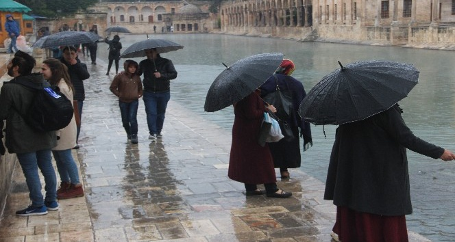Balıklıgöl'e gelen vatandaşlar balıkları şemsiye altında besledi