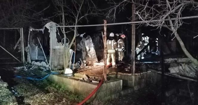 Beykoz'da bir çiftlik alev alev yandı
