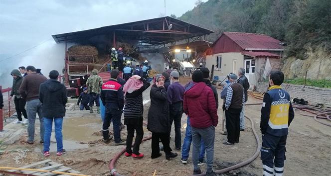 Çiftlikte çıkan yangında 12 ton saman balyası küle döndü