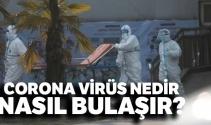 Corona virüsü belirtileri neler, nasıl bulaşır?  Corona virüsü nedir?