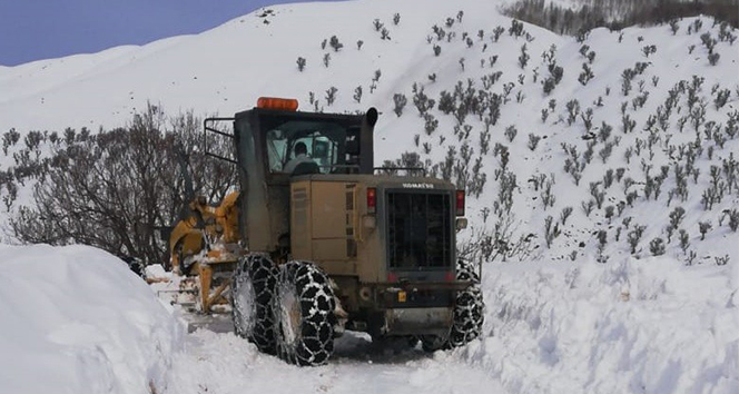 Bingöl'de kar 254 köy yolunu ulaşıma kapattı