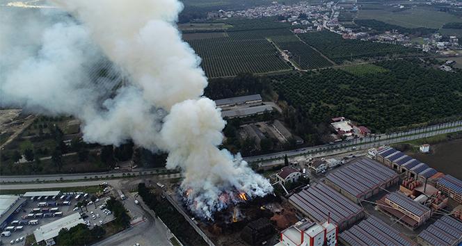Adana'da fabrika yangını saatlerdir söndürülemedi