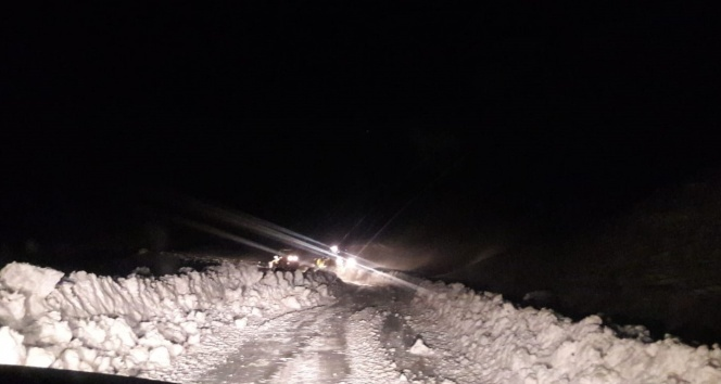 Siirt'te 30 köy yolu ulaşıma kapandı
