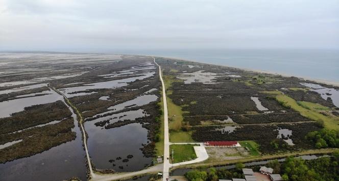 Cumhurbaşkanlığınca 'kesin korunacak hassas alan' ilan edilen Kuş Cenneti havadan görüntülendi