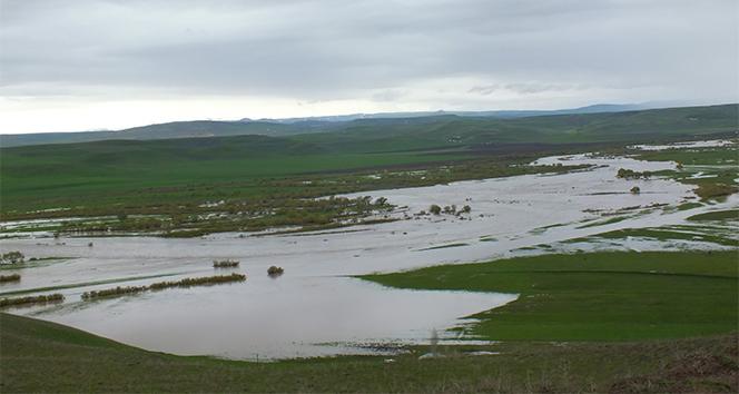 Malazgirt Ovası ikinci defa sular altında kaldı