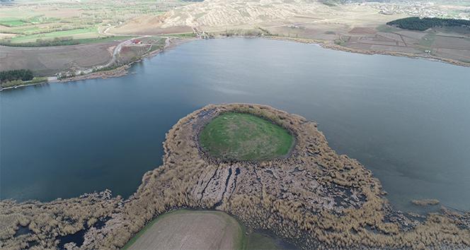 Hafik gölü 'kesin korunacak hassas alan' ilan edildi