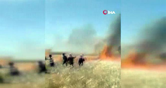 YPG/PKK 10 bin dönümden fazla tarım arazisini yaktı
