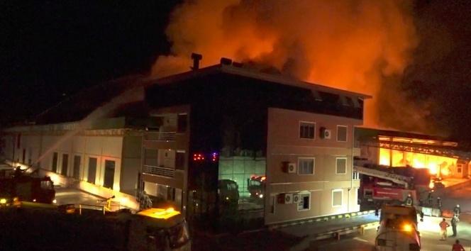 Antalya'da soğuk hava deposunda yangın!
