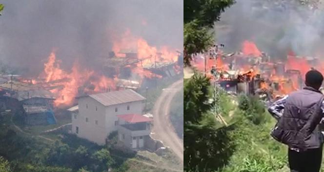 Artvin'de bir köy yandı! Evler küle döndü