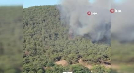 Heybeliadadaki yangına çok sayıda araç ve helikopterle müdahale edildi