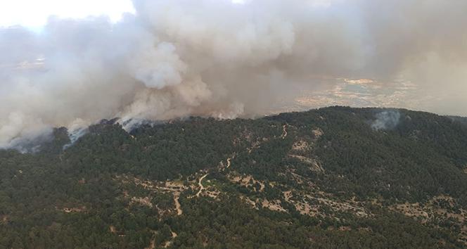 Aydın'dan Muğla'ya sıçrayan yangın devam ediyor