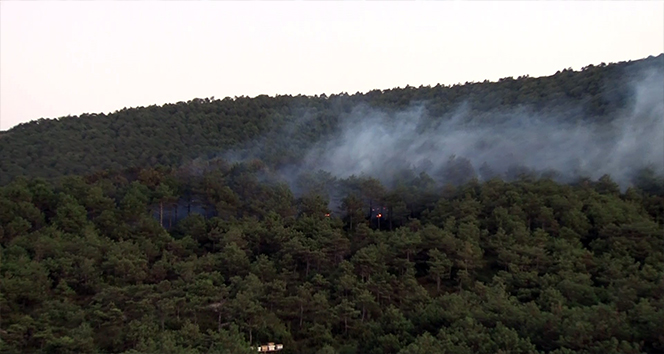 Kayışdağı'nda çıkan orman yangını kontrol altına alındı